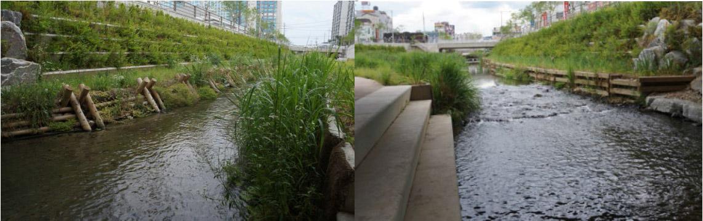 城市水系2.jpg