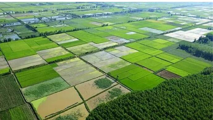 首页 新闻资讯 行业动态      1,海绵型设施农业-连栋温室模式   雨水